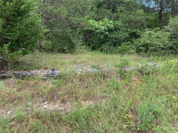 Table Rock Lake Property!! .77 acres in AR