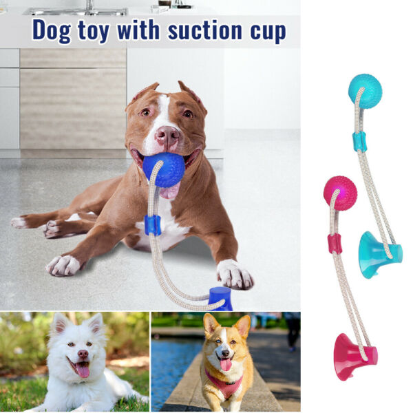 Pet Molar Biting Toy Dog Tug Of War Chewing Toy With Suction Cup USA $8.90