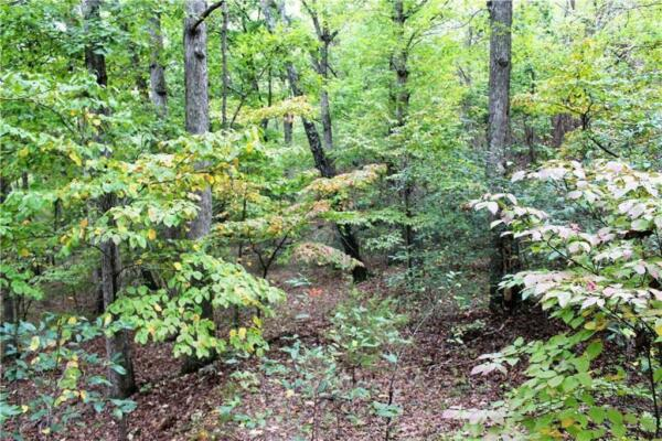 Breathtaking Lake Property!! .49 Acres in AR