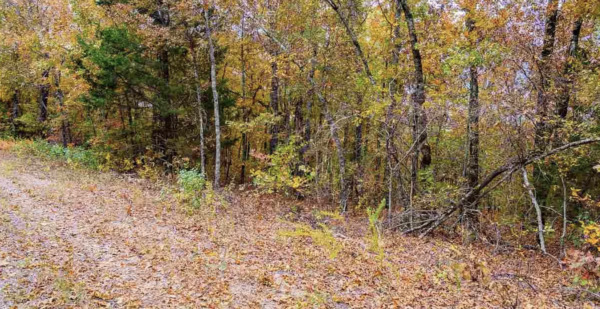 End of Cul de Sac - .29 acres in AR - LAKE and More! Own Your Own Paradise! $$$