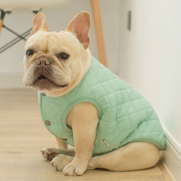 New Dog Vest with Buttons French Bulldog Vest English Bulldog Vest Dog Clothes $25.60