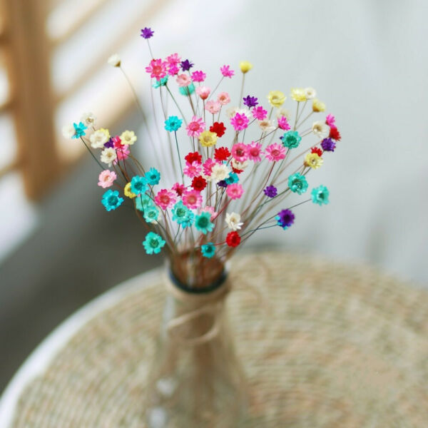 30pcs Dried Flowers Mini Daisy Small Star Floral Bouquets DIY Wedding Home Decor
