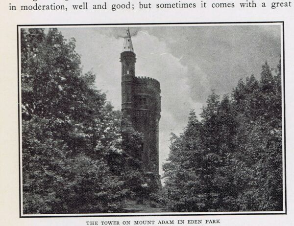 Tower on Mount Adams Eden Park Stand Pipe Cincinnati OH 1925 Page of History $10.99