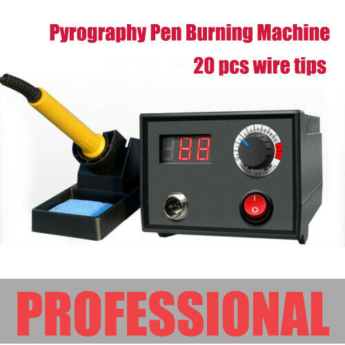 Professional 110V Wood Burning Pen Kit w 20 Pyrography Wire Tips US STOCK