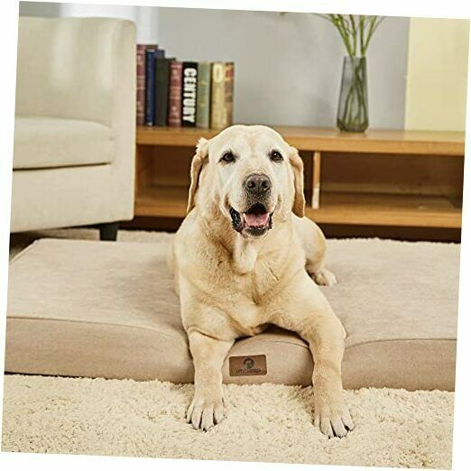 """Memory Foam Orthopedic Large Dog Bed 3.5 Inches Thick 36""""x27""""x3.5"""" L Beige $58.51"""