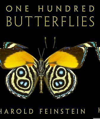 One Hundred Butterflies by