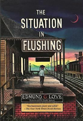 The Situation in Flushing (Great Lakes Books Series) by Love, Edmund G