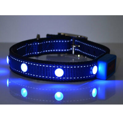 Blue Dog Pet Puppy Extra Bright Safety Collar For Night Strong Nylon Small Dog