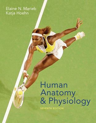 Human Anatomy And Physiology,Elaine Nicpon Marieb, Katja Hoehn,  Acceptable  Boo