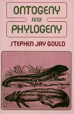 Ontogeny and Phylogeny - Gould, Stephen Jay - Good Condition