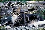 Cats: A Book of 21 Postcards, , Excellent Book
