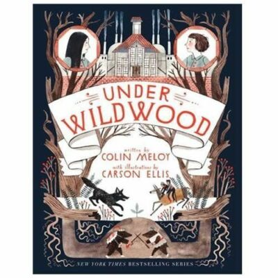 Under Wildwood (Wildwood Chronicles), Meloy, Colin, Good Book