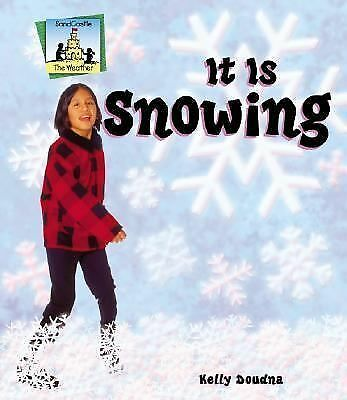 Weather Ser.: It Is Snowing by Kelly Doudna