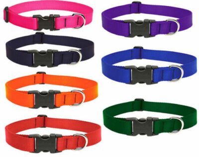 LUPINE DOG COLLAR OR LEASH SOLID COLORS (PICK SIZE AND COLOR) NEW W/ TAGS  SALE