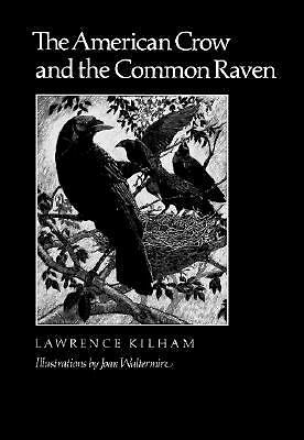 The American Crow & Common Raven (W. L. Moody Jr. Natural History Series)