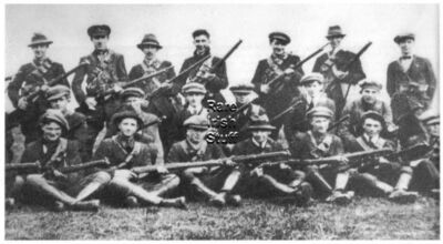 IRA - Sean Hogans Flying Column, 3rd Tipperary Brigade Irish War Photo