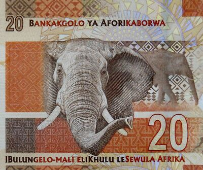 ELEPHANT on MONEY 2014 SOUTH AFRICA 20 RAND BANKNOTE NELSON MANDELA Uncirculate