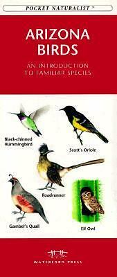 Arizona Birds: An Introduction to Familiar Species (Pocket Naturalism Series), ,