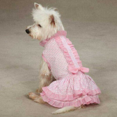 Charlotte Ruffle PINK Gingham Daisy Puppy Dog DRESS Miscellaneous Sizes