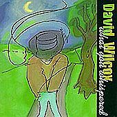What You Whispered by David Wilcox (CD, Aug-2000, Vanguard)