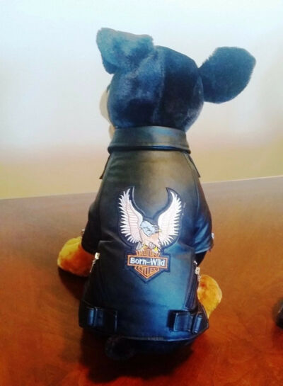 Born Wild Motorcycle Jacket for Dogs in Black