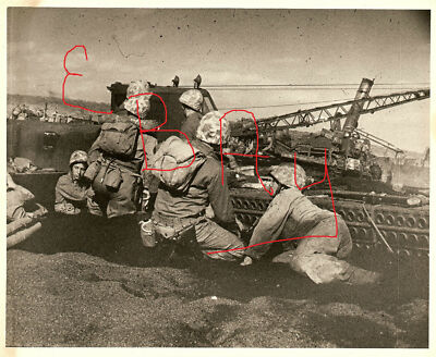 WWII 8X10 PHOTO MARINES PINNED DOWN ON BEACHES OF IWO JIMA 1945 LOOK