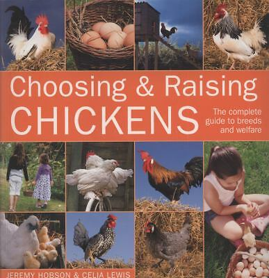 Choosing & Raising Chickens by Lewis, Celia