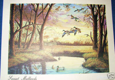 Print  - Mallard Ducks - Litho -Glasper - Nice - Sunset