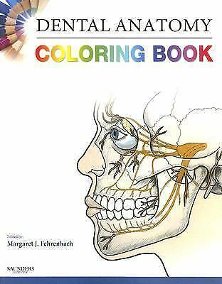 Dental Anatomy Coloring Book, 1e, SAUNDERS, Good Book
