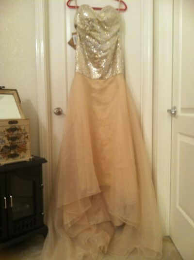 Prom / Bridal Gown  Jen Jen           Champagne New With Tags