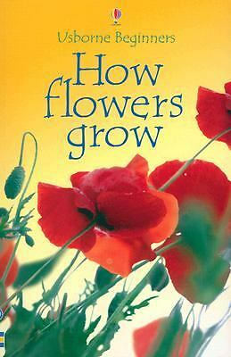 How Flowers Grow (Usborne Beginners) by Helbrough, Emma