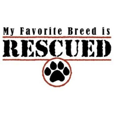 My Favorite Breed is Rescued T-Shirt Dog Lover Cat Charity Tee Rescue Youth-6XL