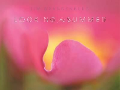 Looking for the Summer, Brandenburg, Jim, Good Book