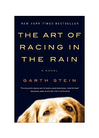The Art of Racing in the Rain: A Novel, Stein, Garth