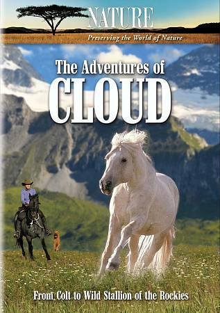 The Adventures of Cloud by Ginger Kathrens