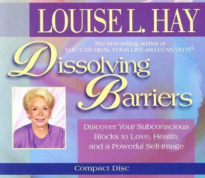 Dissolving Barriers by Hay, Louise