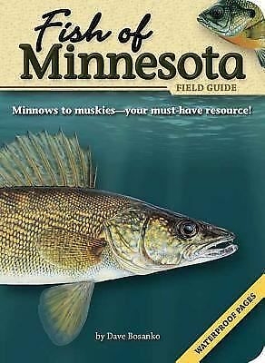 Fish of Minnesota Field Guide (The Fish of) by Dave Bosanko