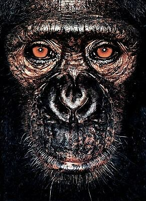 James Mollison: James & Other Apes by Goodall, Jane