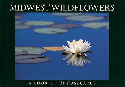 Midwest Wildflowers Postcard Book