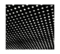 Bloom by Beach House