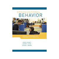 Organizational Behavior: Improving Performance and Commitment in the Workplace,