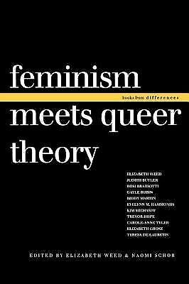 Feminism Meets Queer Theory (Books from differences) by