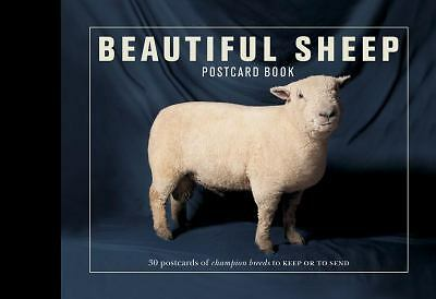 Beautiful Sheep Postcard Book (Beautiful... Postcard Books), , Good Book