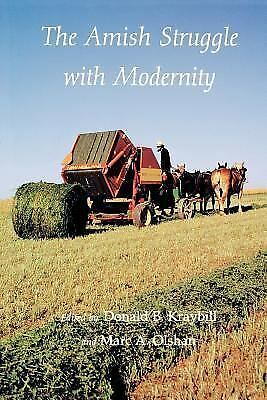 The Amish Struggle with Modernity, , Good Book