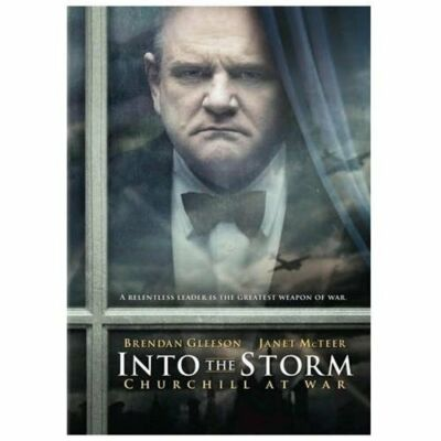 Into the Storm by Brendan Gleeson, James D'Arcy, Janet McTeer