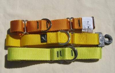 "Premier 1"" Wide Nylon Collars-Yellows-New"