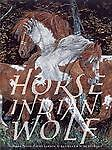 Horse Indian Wolf: The Hidden Pictures of Judy Larson, Kudlinski V., Kathleen, G