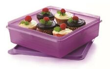 Tupperware Outdoor Storage B2B Snack Stor (2.9L)