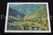 R164 Poster photographie rizière montagne Baguio Philippines Rossignol 76*56 cm