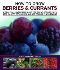 How to Grow Berries & Currants, Whiteman, Kate, Bird, Richard, New Book